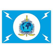 Флаг Интерпола