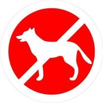 Знак «Вход с домашними животными запрещен»